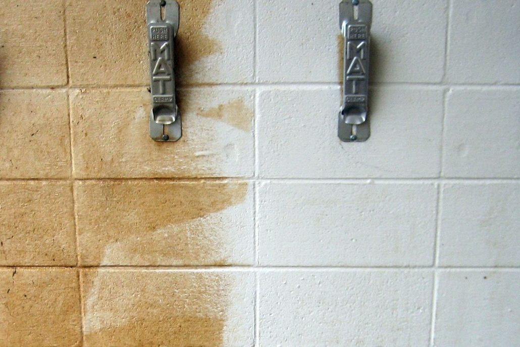Nu-Wall Cleaner | Arcadian Services